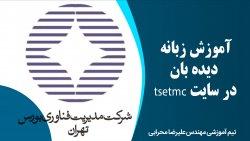 آموزش زبانه دیده بان در سایت tsetmc