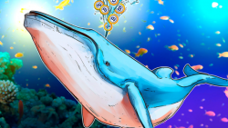 اهمیت رفتار نهنگ ها در بازار ارز دیجیتال و تاثیر آنها بر قیمت ارزها