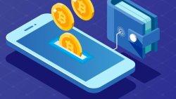 کیف پول نرم افزاری چیست؟