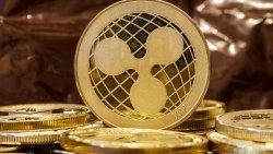 معرفی انواع کیف پول ریپل (XRP)