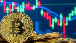 معرفی انواع کیف پول بیت کوین (BTC)