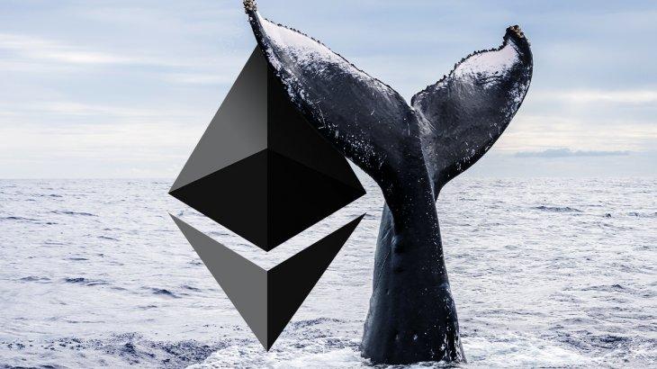 39 درصد ارز دیجیتال اتریوم در دستان نهنگ ها