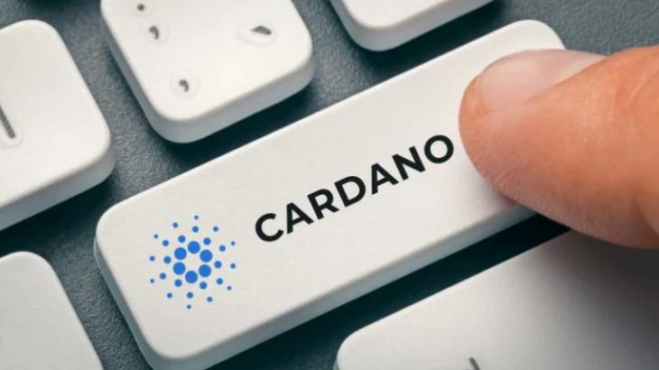 کاردانو می گوید تمرکز بعدی آن راه اندازی اپراتور استخر سهام غیرمتمرکز (SPO) است