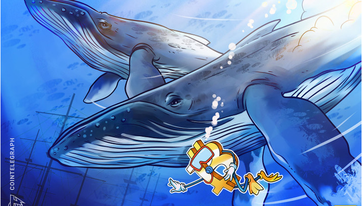 تخلیه 140 هزار بیت کوین از طریق نهنگ ها