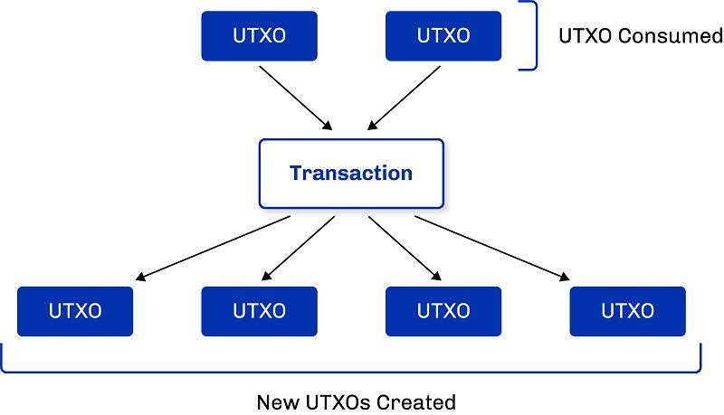 منظور از UTXO در تحلیل درون زنجیره ای چیست؟
