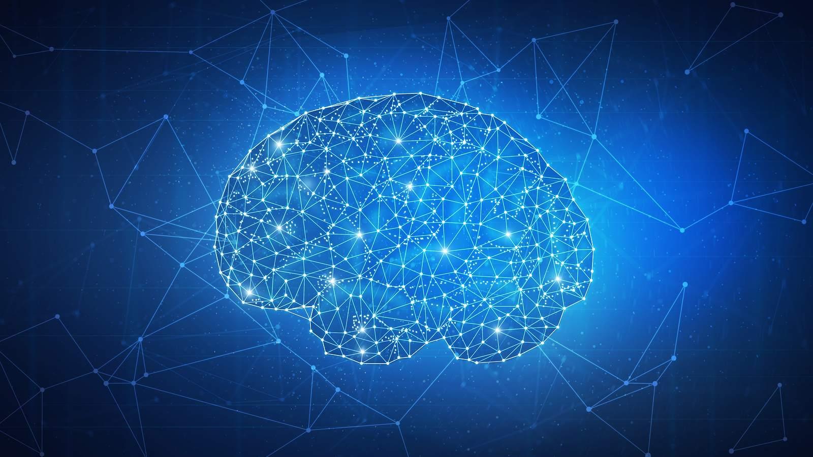 الگوریتم اثبات مغز چیست؟